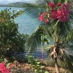 Foto de Discovery Island Resort and Dive Center
