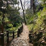 Photo of Arisugawanomiya Memorial Park