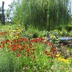 jardin des flaures