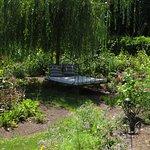 MOment de détente au jardin