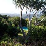 Paradise Cove Guesthouse Foto