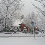 Photo of Center Parcs Le Lac d'Ailette
