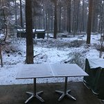Center Parcs Whinfell Forest Foto