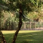 Foto de Transcorp Hilton Abuja