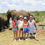The Elephant Camp Foto
