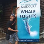 Wings Over Whales Foto