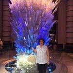 Foto de The Coral