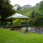 The Inn at Kulaniapia Falls Foto