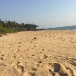 Photo of Thottada Beach