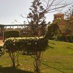 Photo of Movenpick Resort & Spa El Gouna