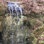 Falling Waters State Park Foto