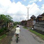 Foto di Halo Bike Cycling Tour