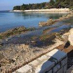 Photo of Sol Garden Istra