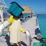 Foto de Ocean Tours