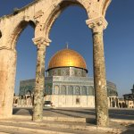 From the gardens on the Temple Mount...