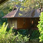 Baan Khao Sok Resort Photo