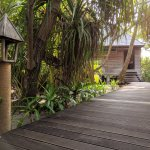 Foto de Gangehi Island Resort