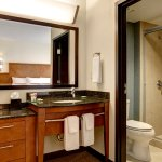 Standard guest room bath with shower