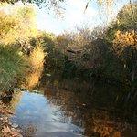 walk to beautiful oak creek below the hotel