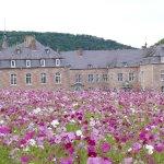 Champs de fleurs (10/08/2017), bravo aux jardiniers.