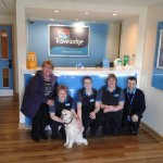 Staff welcoming Patch back after she ran away after being mauled
