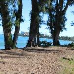 Turtle Bay Resort in background