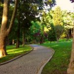 Photo of Gulhane Park
