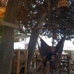 Foto di Cedar cafe