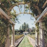 View of The Belvedere through a rose covered pergola!