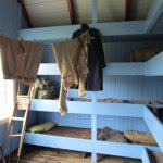 scout bunks