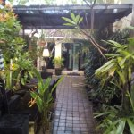 Photo of Legian Guest House