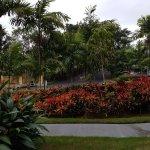Photo de Mercure Bali Nusa Dua