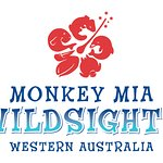Wildsights Logo