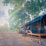 Foto de Kulu Safaris Sri Lanka