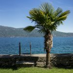 Photo of Hotel Gardenia al Lago