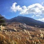 えびの高原駐車場に近づくと、雄大な韓国岳を見渡せる絶景のススキの原っぱがお出迎え!