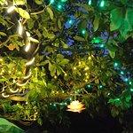 night decor at namaste cafe