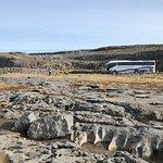 The Burrens