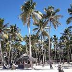 Foto de Coral Costa Caribe Resort & Spa