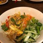 Sen Viet Photo