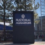 National Aquarium Foto