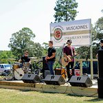 Live music at one of our awesome festivals!