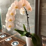 An orchid at every table