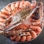 блюда Stone Crab