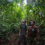 Learn about jungle survival without leaving Cotton Tree Lodge grounds