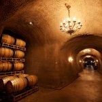 French oak barrels inside the caves