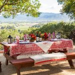 Private Picnic with a View