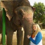 myself and Sumba the elephant