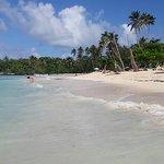 Photo of La Playita Beach