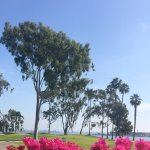 Photo de Coronado Municipal Golf Course
